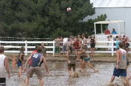 People playing mud volleyball